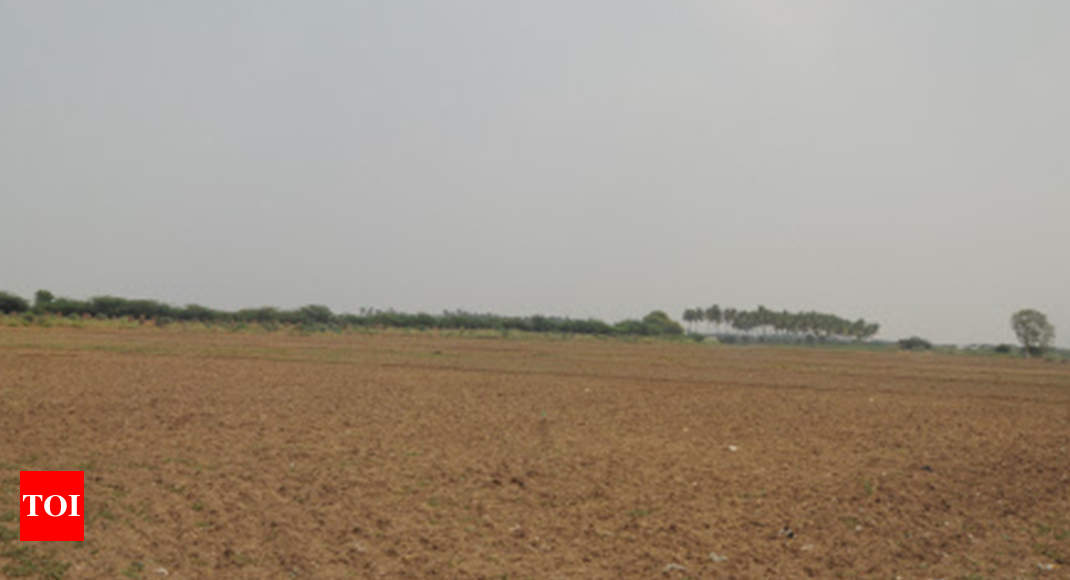 Collector wanted probe to protect 'valuable' land