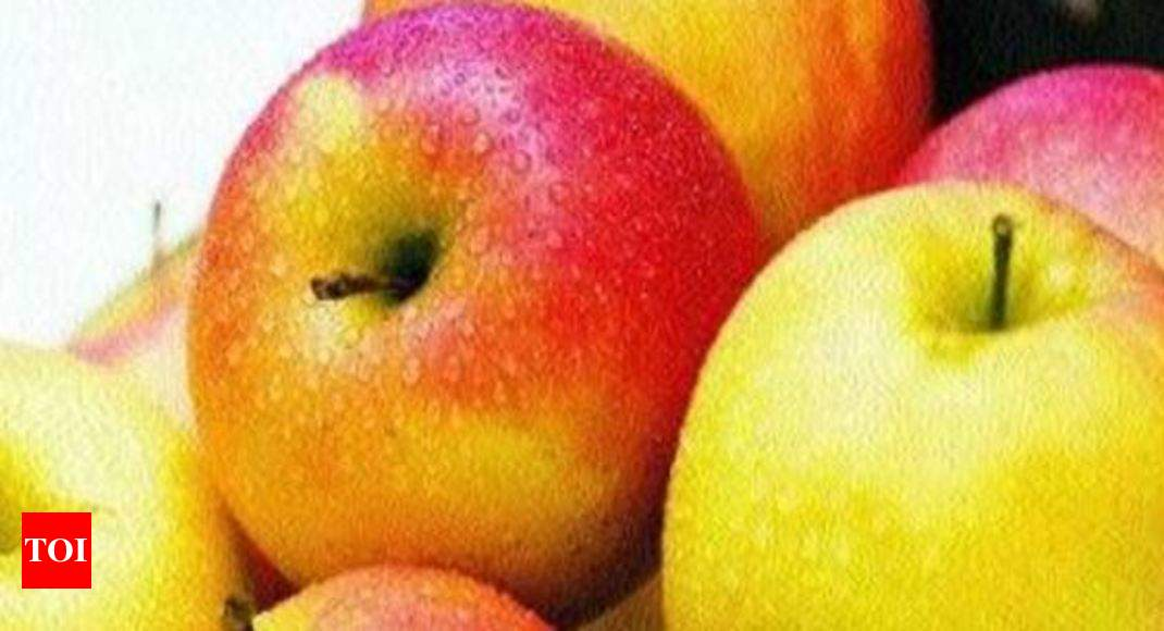 Apple Crop Apple Production To Remain Less This Time In Himachal