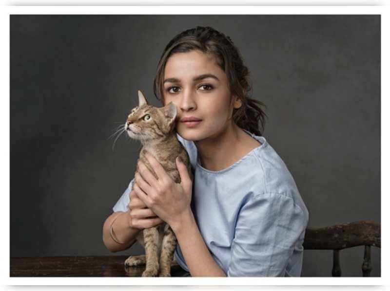 Alia Bhatt champions the welfare of street cats and dogs