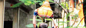14 and above can take part in Dahi Handi, orders HC