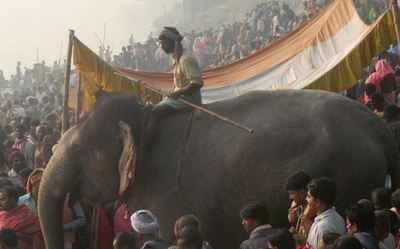 sonepur mela: Sonepur Mela to be a 32-day affair | Patna