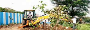 PMC plants 80 trees on one day, relocates 30 of them on another