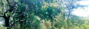 IGP crops up in Khandala land dispute