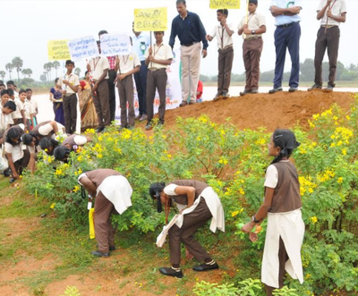 30,000 seed balls planted in Ariyalur   Trichy News - Times