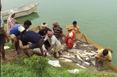Promote Aquaculture Farming Business