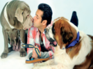 Celebs and their love for four-legged friends!