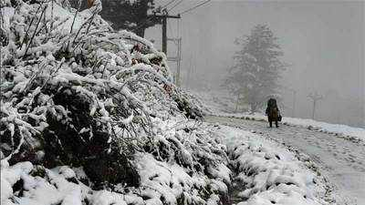 Jamu And Kashmir Avalanche In Jammu Kashmir 3 Jawans Missing After