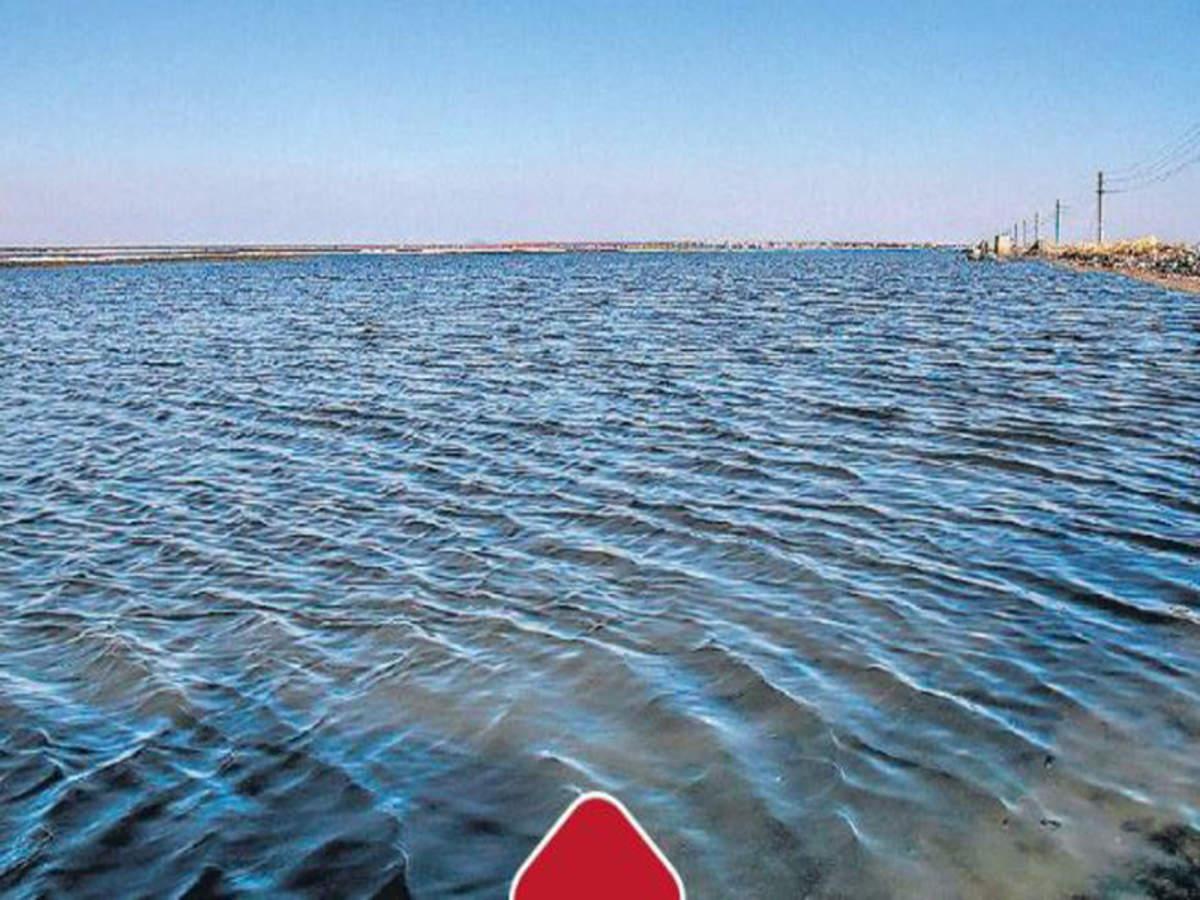 Sambhar: A Lake No More | Jaipur News - Times of India