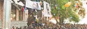 Delhi: 'Virgin tree' in Hindu College dubbed misogynist