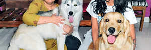Family harassed for keeping pets, forced to move out of Pune