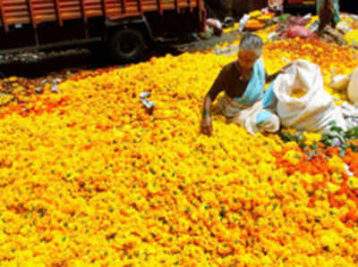 Vrindavan-Mathura: Widows of Vrindavan ashram are all set to become