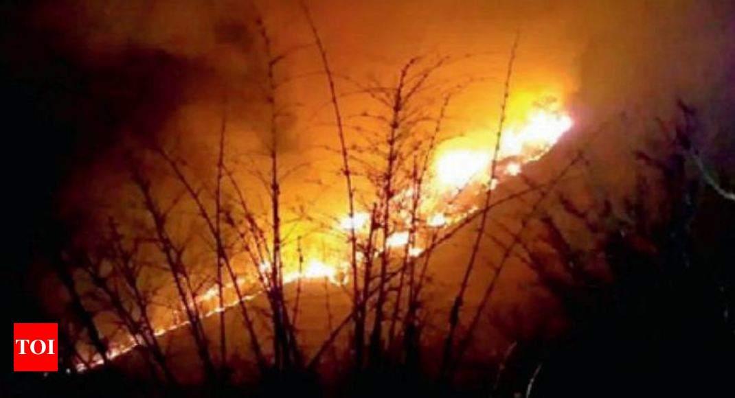gadchiroli maoists set huge forest area in gadchiroli on fire