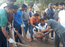 Cleanliness drive held at Community Centre of Aurangabad