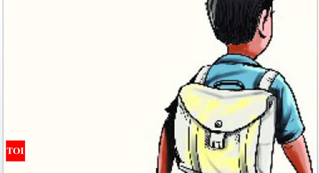 Delhi govt invites proposals from corporates, NGOs to train school dropouts - Times of India