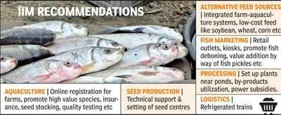 State govt to boost fish output to double farmers' income in