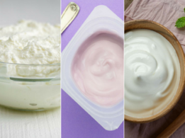 Curd, yoghurt or probiotic yoghurt?