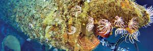 Underwater survey reveals secrets of Australian WWI submarine wreck