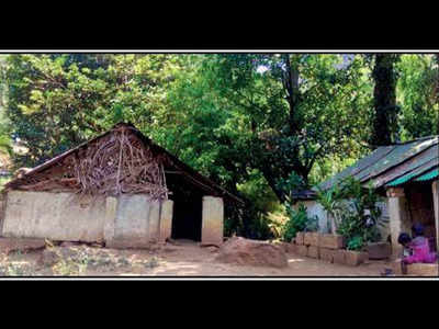 tamil nadu tribal people s association: Power for all