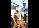 Kolhapurkars encourage tree plantation drive