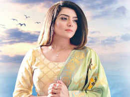 'Parwah Ni Karidi' song: Rupinder Handa summarises her journey in this four minutes song