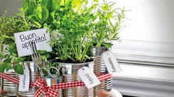 How to make your home environment-friendly