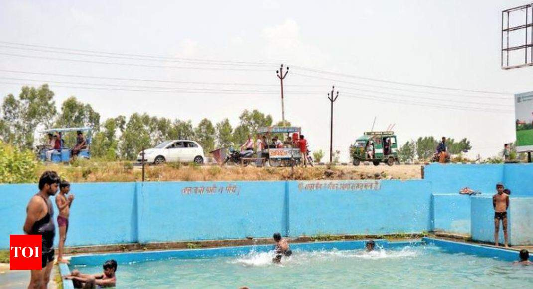 For Up Farmers Pools Are A Cool Business Idea Bareilly News