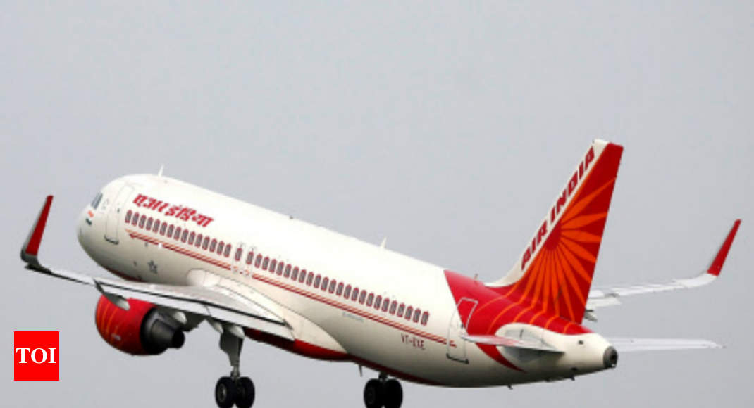 photo - What 100% privatisation of Air India might mean - Times of India