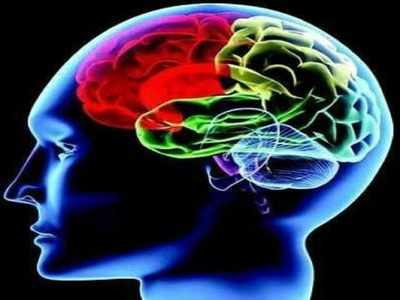Gujarat's brain stroke trend worrying' | Ahmedabad News - Times of India
