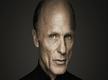 Don't always understand 'Westworld': Ed Harris