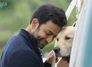 Prithviraj: When you make a statement these days, you have to be prepared for disagreements, which might soon become a mob