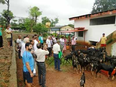 3-day training for scientific management of goats held in