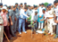Kolhapurkars gather near Shenda park for tree plantation