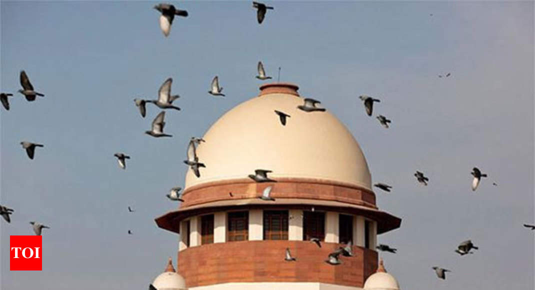 Petitioner: Legalising gay sex may endanger national security - Times of India