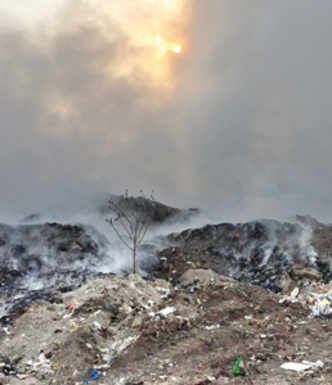 PMC faces NGT wrath over failed waste mgmt promises