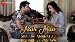 Hindi Song Nain Mila Sung By Shafqat Amanat Ali