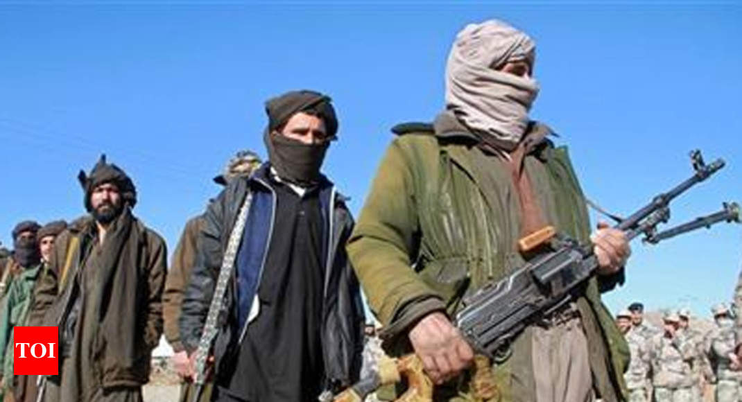 taliban terrorist group essay Essay the taliban really know much about the taliban group which is one of the major terrorist groups in today's society so i am going to try and explain this group the best that i can.