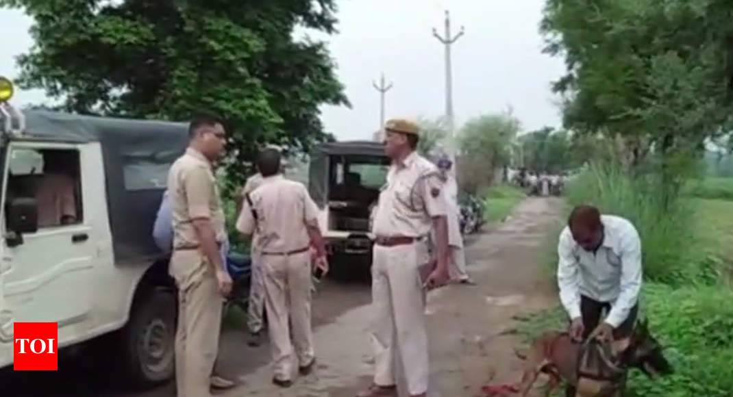 Rajasthan: Man beaten to death on suspicion of cow smuggling in Alwar