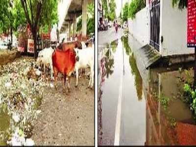 Stagnant water in drains, garbage and coolers is alarm for dengue