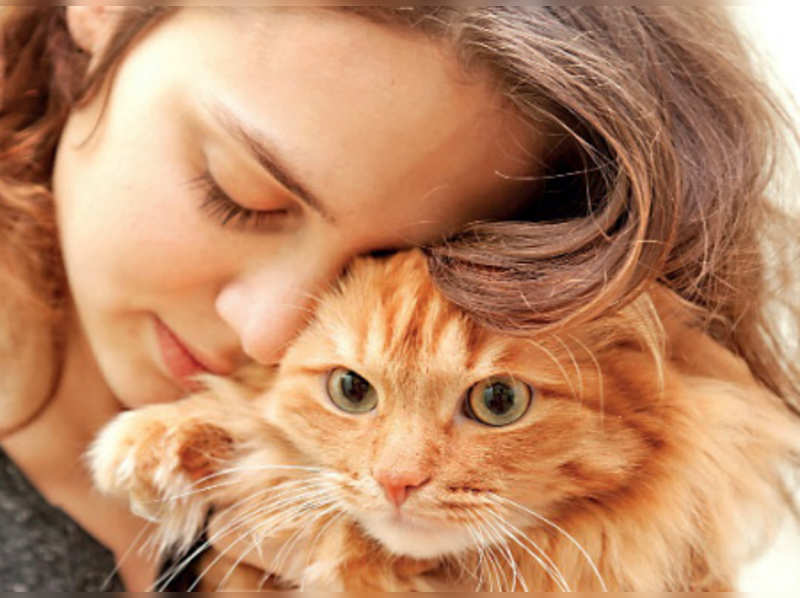 Did you know your cat has special protein needs?