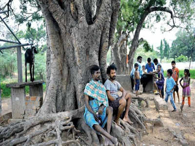 Sri Lankan refugees: Why Lankan refugees are reluctant to go back