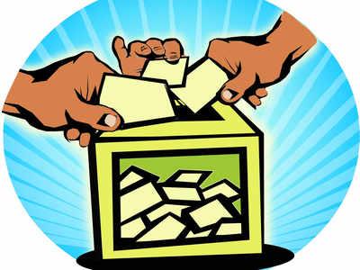 tripura panchayat bypolls: Tripura panchayat bypolls: BJP