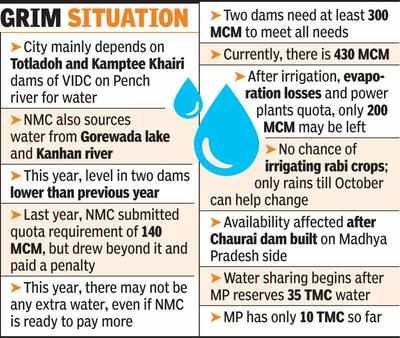 Dry Totladoh bodes ill for city water supply   Nagpur News