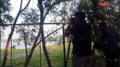 Noida's Okhla Bird Sanctuary is favorite among birdwatchers