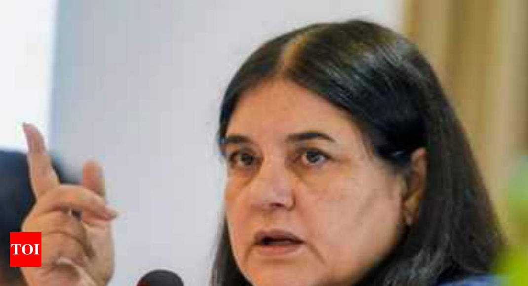 Maneka Gandhi to propose 4-member panel to look into #MeToo cases - Times of India