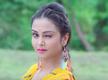 Watch: Bhojpuri film 'Mili Ta Mili Na Ta Jai Siyaram' teaser is out