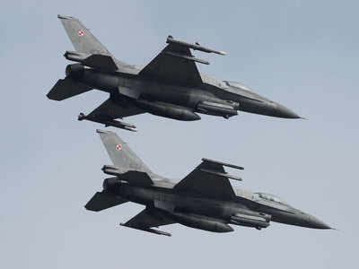No pressure on India to buy F-16 fighter jets from US: Envoy
