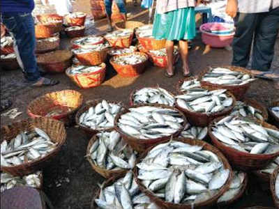 Vendors of local fish rake in moolah at wholesale market | Goa News