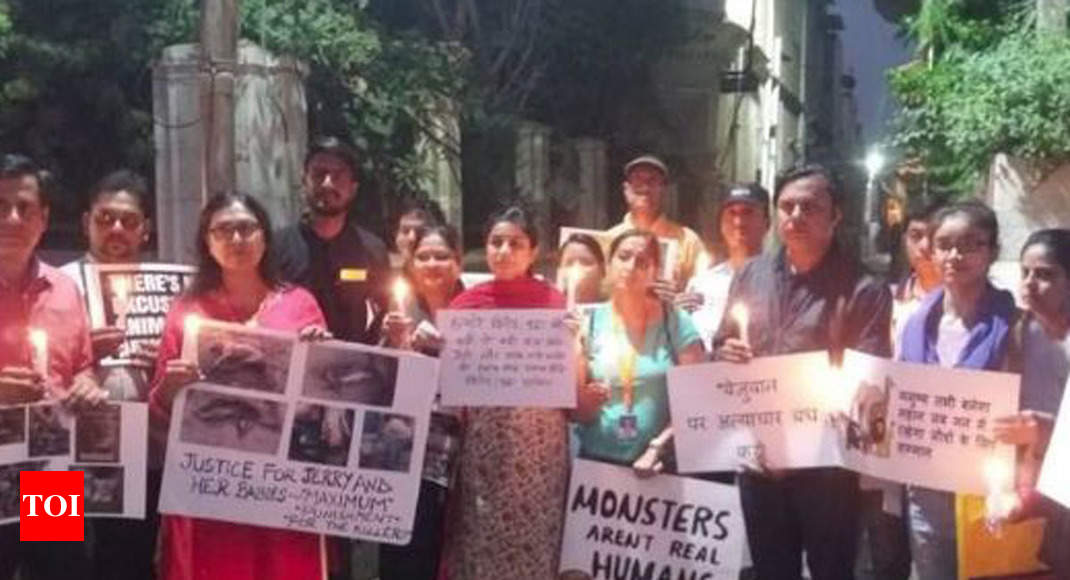 Agra residents protest killing of stray dog, her six newborn pups; FIR lodged - Times of India