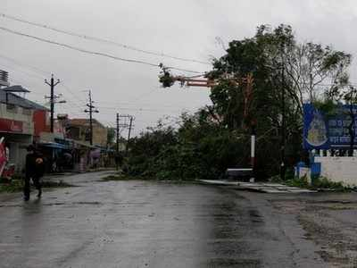 Cyclone Gaja: Fallen trees removed from Pudukkottai roads, focus now