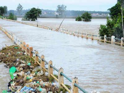 water pollution: 17 polluted rivers: Karnataka to make them